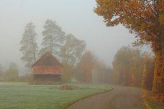 Irgendwo im Herbst