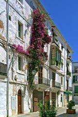 Irgendwo in Eivissa ²