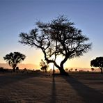 irgendwo in Namibia