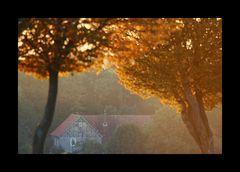 ...irgendwo in Westfalen #13 , der Herbst klopft an...