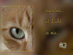 ...irgendwo... ist ein Licht... Eine gute Zeit!