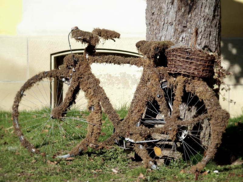 Irgenwo Hab Ich Mein Fahrrad Stehen Gelassen.... Foto