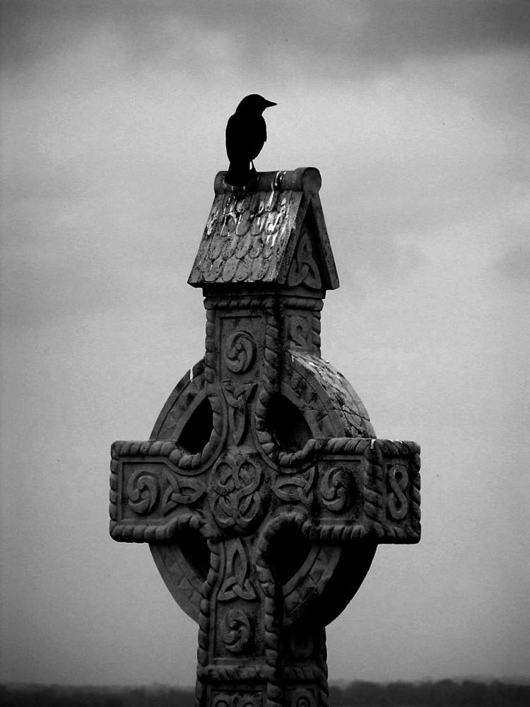 Irish crow...