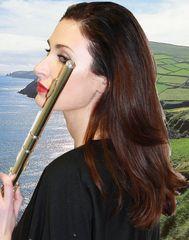 Irish flute 2012
