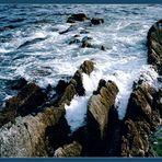 Irland-Flut