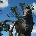 Iron Equine