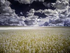 IRre Wolken