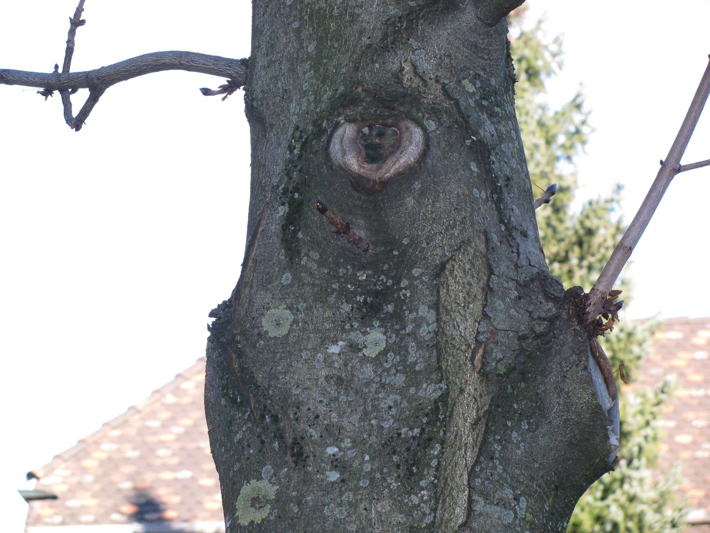 ...... is watching you :-)