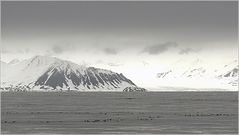 Isfjorden...