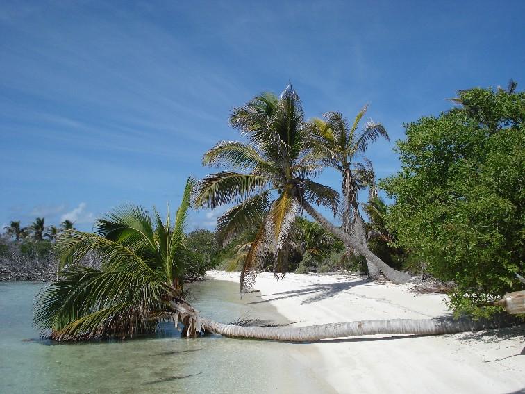 Isla Contoy 2
