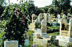 Islamischer Friedhof.    .120_3788