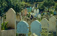 Islamischer Friedhof.     .120_3795