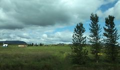 Island und Bäume