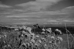 Islay in schwarz-weiß Nr.2