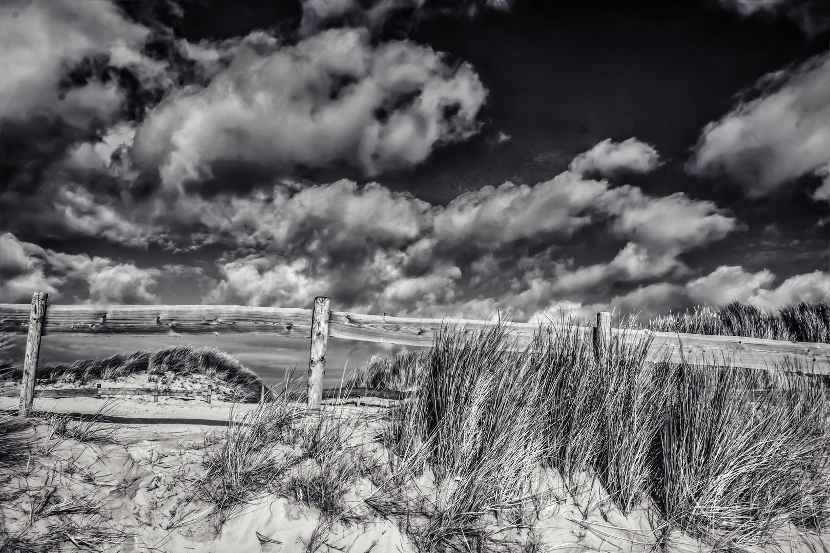 Isle of Ameland / Netherlands