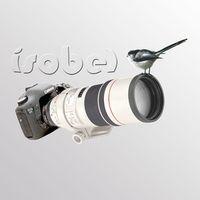 isobel333