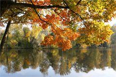 Ist der Herbst nicht wunderschön...