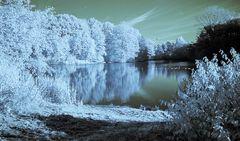 Ist der Winter schon da? Nein, aber in der Infrarotaufnahme scheint es so..#1660##