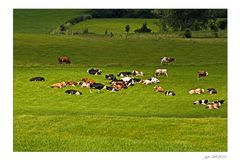 Ist die Viehzucht aufgegeben, heißt es von Touristen leben...