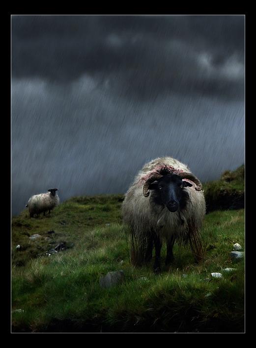 it always rains in northern ireland