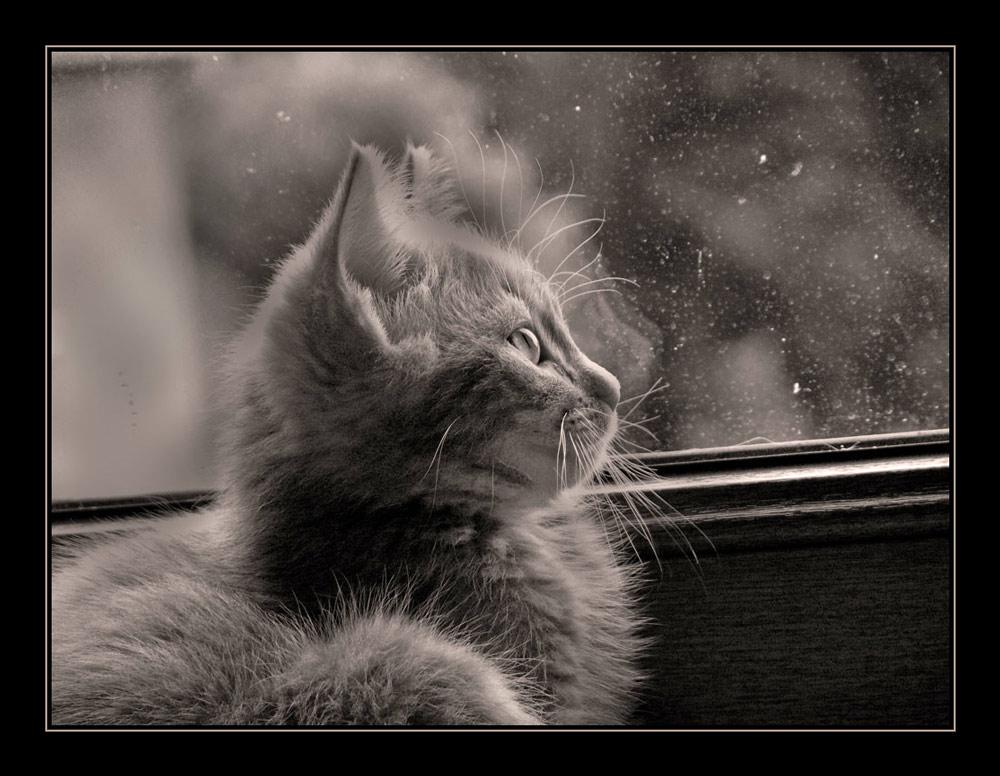 ...it rains...