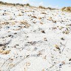 italian sand