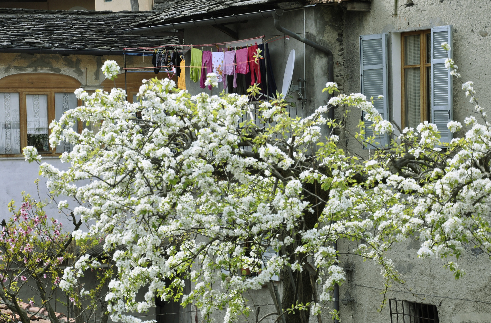 Italienische Frühlingsimpression (Orta San Giuglio)