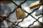 It's the key that fits the locks on everyone's heart.
