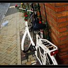 Ivy on bicycle....