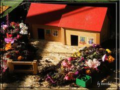 Ja, das könnte schön sein... ein Häuschen mit Garten...