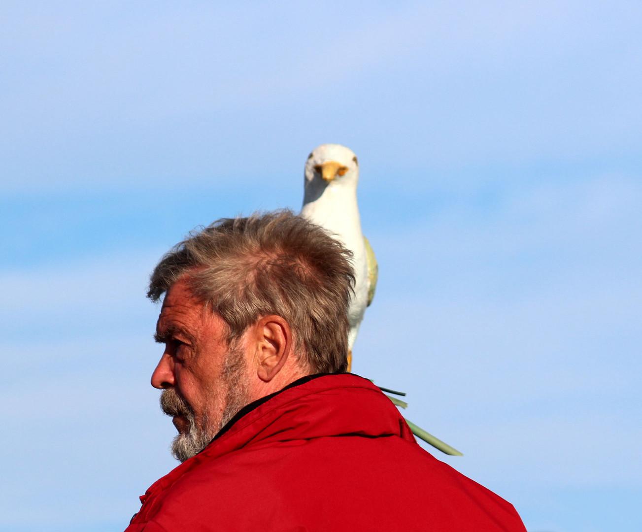 Ja - ich habe einen Vogel