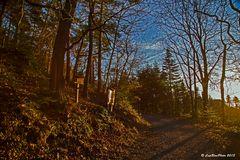 Jägerweg im Seitenlicht