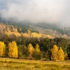 Jagdsaison Herbst