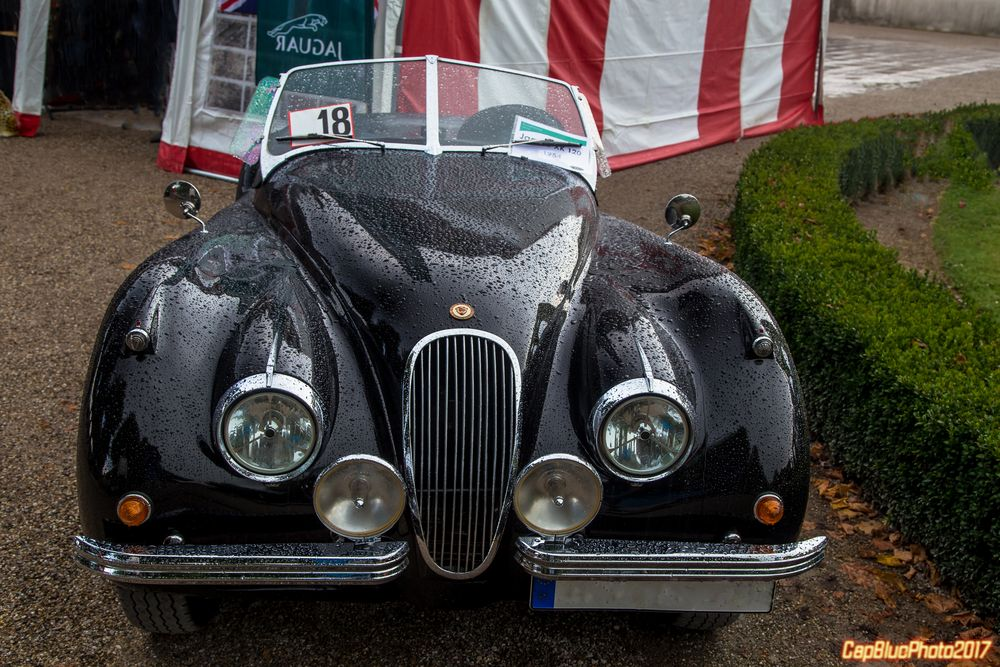 Jaguar XK 120 GB 1954 bei den Classic Cars Schwetzingen