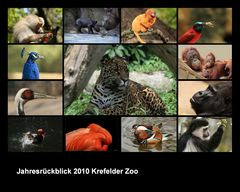 Jahresrückblick Krefelder Zoo2010