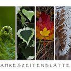 Jahreszeitenblätter