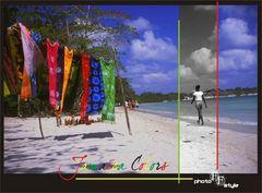 Jamaica Colors