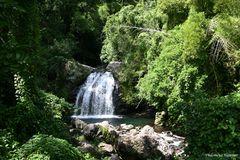 2009 Jamaica