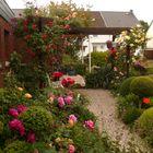 Jani´s Vorgarten im Mai