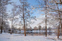 Januar am See