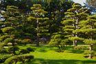 jap. Garten