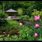 Japan - Garten