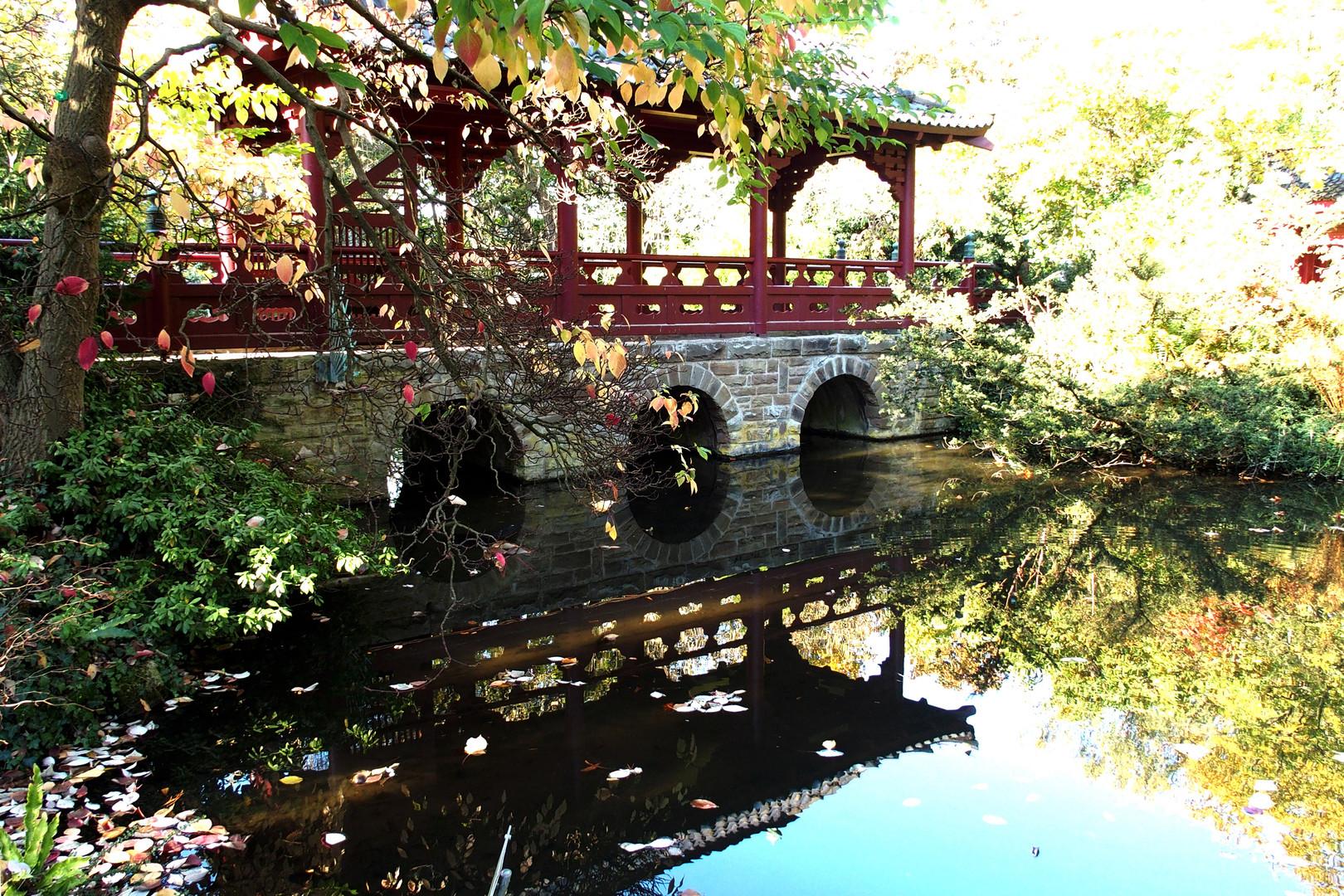 Japan Garten Leverkusen Foto Bild Landschaft Garten