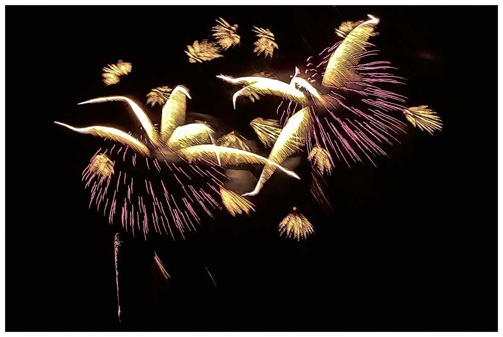 Japan-Tag 2018 - Abschluss Feuerwerk
