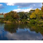 Japanese Garden -2 [Kiyosumi Garden]