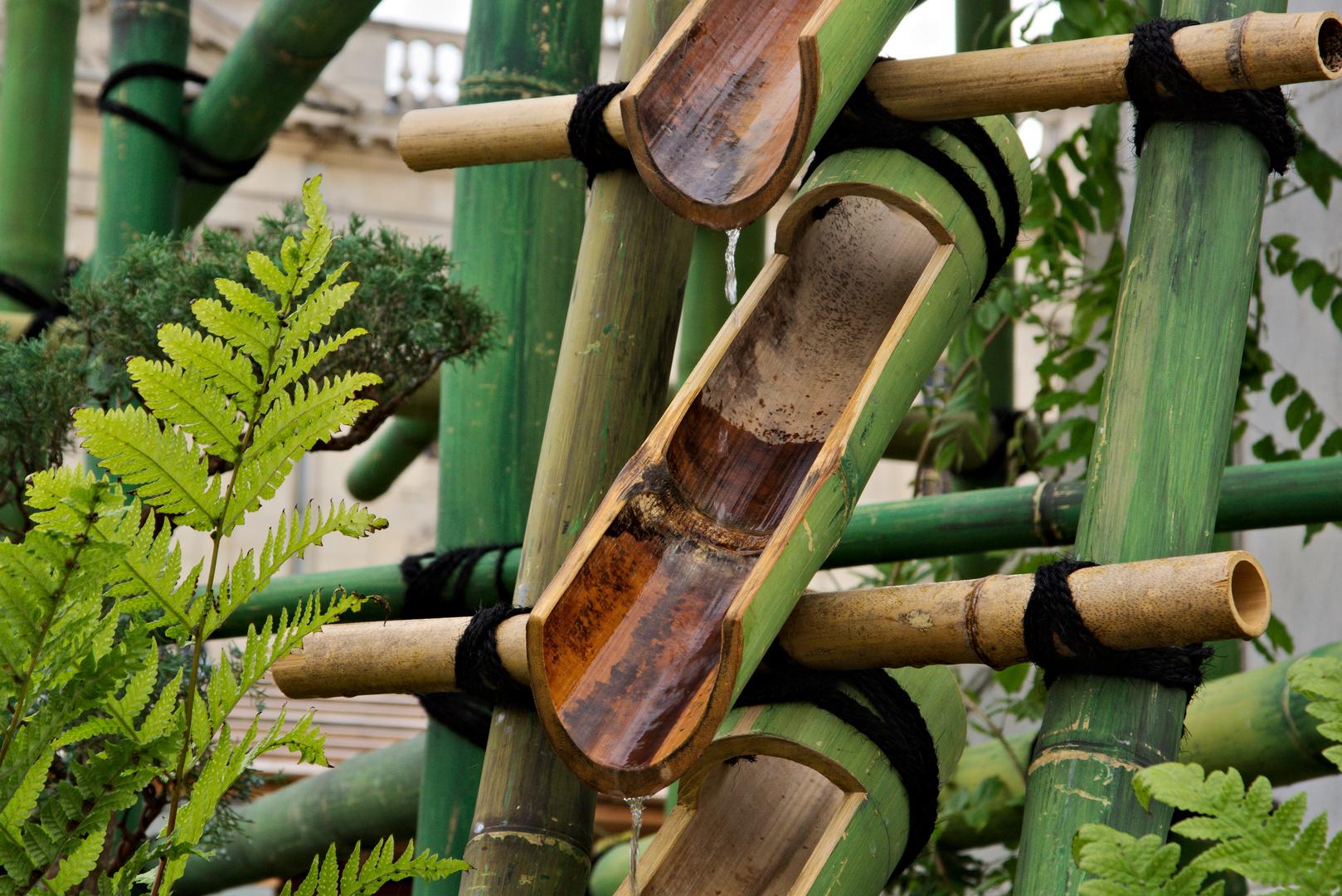 Japanischer Bambusbrunnen Foto Bild Wasser Tropfen Bambus