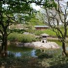 Japanischer Garten Bonn - Rheinaue