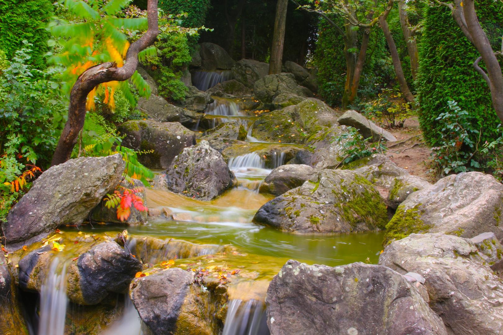 Japanischer Garten in Bonn 4