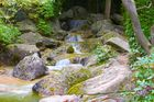 Japanischer Garten in Bonn 9