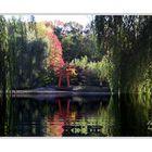 Japanischer Garten in Schloß Arcen in Holland